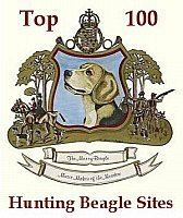 Top 100 Hunting Beagle Sites